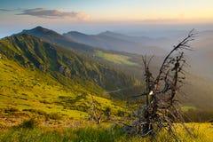 Afton Carpathians Royaltyfri Fotografi