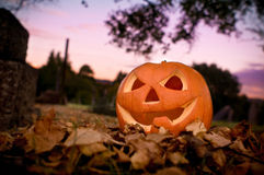 afton halloween Royaltyfri Bild