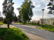 Afton i parkera av staden Arkivbild
