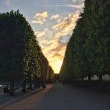 Afton i Tuileries Royaltyfri Bild