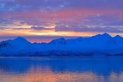 Afton med havsis Vitt snöig berg, blå glaciär Svalbard, Norge Is i havet Isbergskymning i nordpolen Rosa clou Royaltyfri Foto