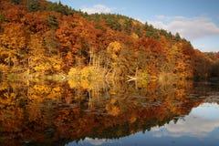 afton oktober Fotografering för Bildbyråer