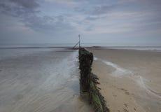 Afton på den Sandown stranden med lägenhetsander och hösthimlar Royaltyfri Bild