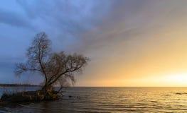 Afton på det Kiev havet arkivbild