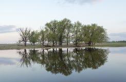 Afton på floden royaltyfri bild