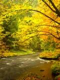Afton på floden i ljusa höstfärger Fuktighet i luft efter regnig dag Fotografering för Bildbyråer