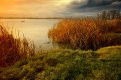 Afton på lakesiden Arkivfoton