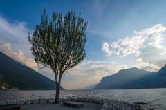 Afton på sjön Gara Royaltyfri Fotografi