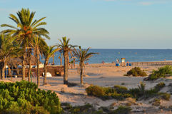 Afton på stranden Royaltyfria Foton