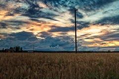 Afton vid kornfälten Royaltyfri Fotografi