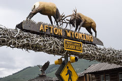 Afton, Wyoming, Elkhorn Arch Stock Image