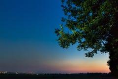 Aftonen för sen sommar med stjärnan skuggar, och den stora eken förgrena sig i skymningen Royaltyfri Bild