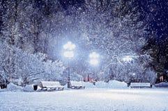 Aftonen för vinterlandskapvintern i den snöig natten parkerar med ensamma bänkar under vintersnöfall Arkivbild