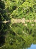 Aftonlandskap på Widewater i Maryland arkivbild