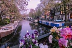 Aftonljus över kanalen i Amsterdam arkivbild