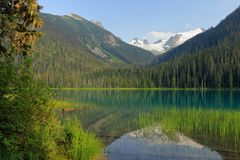 Aftonljus på fridsamma lägre Joffre Lake, Joffre Lakes Provincial Park, British Columbia royaltyfria bilder