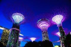 Aftonljus på Marina Bay Singapore royaltyfria foton