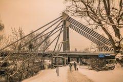 Aftonlynne på Donauen i Wien Arkivbild