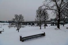 Aftonlynne på Donauen i Wien Royaltyfri Fotografi