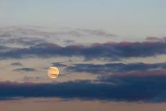 Aftonmåne i blå himmel Arkivfoton