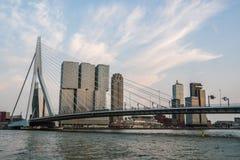 AftonRotterdam horisont med den Erasmus Bridge Kop van Zuid grannskapen, Nederländerna royaltyfri foto