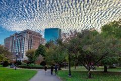Aftonsikt av Boston den offentliga trädgården med härliga moln i himlen arkivbilder