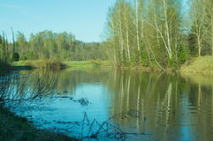 Aftonsikt av sjön med reflexion av träd i vattnet Royaltyfri Fotografi