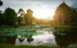 Aftonsikt i bygden av Thailand royaltyfria bilder