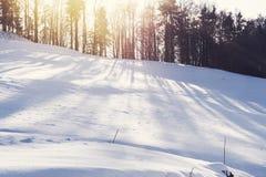Aftonsolen över treeline, som ger snöfältet länge, skuggar Royaltyfri Fotografi