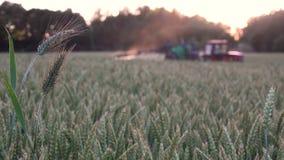 Aftonsolnedgången rays upplysande kemikaliesprej med traktorutrustning arkivfilmer