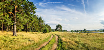Aftonsommarlandskapet med frodigt sörjer trädet på bankerna av floden och grusvägen, Ryssland, Ural fotografering för bildbyråer