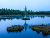 Aftontid på Chalupska hed sjön nära Borova Lada, Sumava berg, Tjeckien, Europa royaltyfri foto
