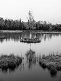 Aftontid på Chalupska hed sjön nära Borova Lada, Sumava berg, Tjeckien, Europa arkivfoton