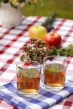 Aftreksel - het openlucht dineren Royalty-vrije Stock Foto's