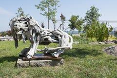 Afwijkings houten leeuw Stock Afbeelding