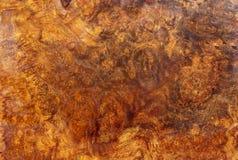 Afzelia burlträ som göras randig för bil för garnering för bildtryckinre, den exotiska trähärliga modellen för hantverk eller abs royaltyfria bilder