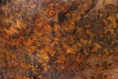 Afzelia-Knotenholz gestreift für Bilddruck-Innenausstattungsauto, exotisches hölzernes schönes Muster für Handwerk oder abstrakte lizenzfreies stockfoto