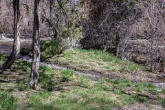 Afzonderlijke stromen stock fotografie