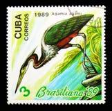 Aga czapla, Filatelistyczny powystawowy Brasiliana - 8 (Agamia aga) Obraz Royalty Free