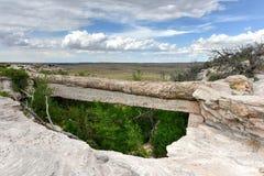 Agaatbrug - Van angst verstijfd Forest National Park Stock Foto's