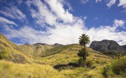 Agaete, Gran Canaria Obrazy Royalty Free