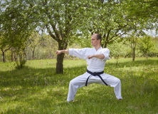 Against the background of nature, a master with a black belt beats two blows with his hands Royalty Free Stock Photos