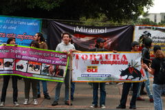 Against bullfighting Stock Images