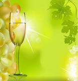 Against the glass of wine grapes and green leaves Royalty Free Stock Images