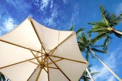 againstblue palmowi parasol nieb drzewa Obraz Royalty Free