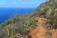 Agana mountains and Atlantic ocean. In one scenery in Tenerife, Spain Royalty Free Stock Photos