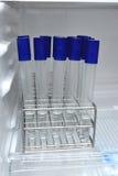Agar-agar in reageerbuisrek voor het testen van de microbiologielaboratorium Royalty-vrije Stock Afbeelding