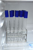 Agar in test tube rack for testing microbiology laboratory Royalty Free Stock Image