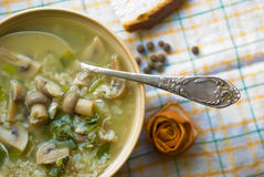 agarical soup Arkivfoto