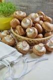 Agaricus bisporus - Fresh raw mushroom champignon wicker baskett Royalty Free Stock Photography